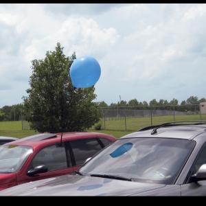 Baloon Stem 1